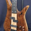 aash bass-instrument photo 1