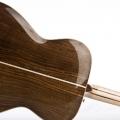 bachmann guitars-instrument photo 2