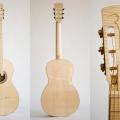 dontcho ivanov luthier-instrument photo 2