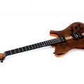 1459914053-dreamer guitarworks-instrument photo 1
