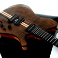 1459914055-dreamer guitarworks-instrument photo 2