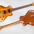ergon guitars-instrument photo 2