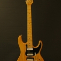 eyb guitars & elyra guitars-instrument photo 1