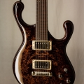fibenare guitars co.-instrument photo 1