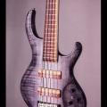 fibenare guitars co.-instrument photo 2