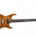 Franfret-guitar-bass for catalogue