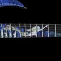 giulio negrini guitars-instrument photo 1