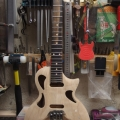 greyhound guitars-instrument photo 2
