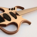 guitars and basses paul lairat-instrument photo 1