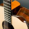 isaac jang guitars-guitar-bass for catalogue