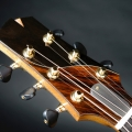 isaac jang guitars-instrument photo 1