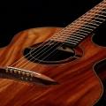 jeffrey yong guitars-guitar-bass for catalogue