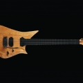 lava guitars-instrument photo 2