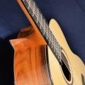 limbo-guitars-instrument-photo-2