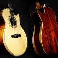 maestro guitars-instrument photo 1