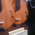 marco guitars & bass-instrument photo 1