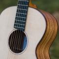 mcnally-guitars-guitar-bass-for-catalogue