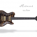 nik huber guitars-instrument photo 1