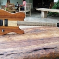novacorda-guitars-instrument-photo-1