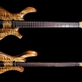 pmc guitars-instrument photo 1