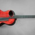 pagelli gitarrenbau-guitar-bass for catalogue