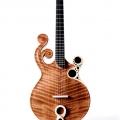 prohaszka guitars-instrument photo 1
