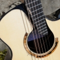 raymond kraut guitars-instrument photo 1