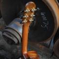 raymond kraut guitars-instrument photo 2