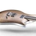 relish guitars-instrument photo 1