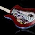 relish guitars-instrument photo 2