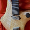 sankey guitars-instrument photo 1