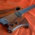 sankey guitars-instrument photo 2