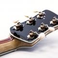 steinbrecher guitars-instrument photo 1
