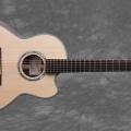 thomas guitars-guitar-bass for catalogue