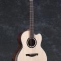 thomas guitars-instrument photo 1