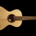 tsopelas handmade guitars-guitar-bass for catalogue