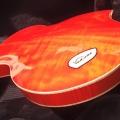 verdinero-guitars-instrument photo 2