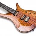 vik guitars-instrument photo 1