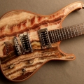zerberus-guitars-instrument photo 1
