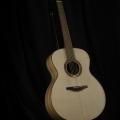 Heiner Dreizehnter – Dreizehnter Guitars / HGGS Wood Challenge