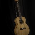Rosie Heydenrych - Turnstone Guitar / HGGS Wood Challenge
